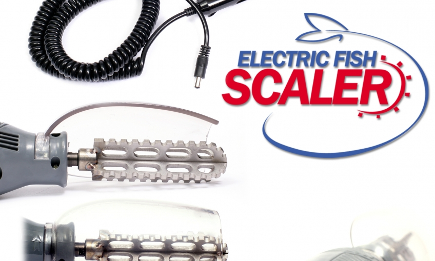 Electric scaler